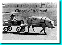 pig pulling cart moving card