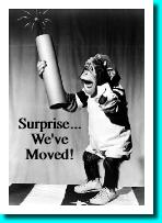 Surprise...We've moved!